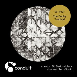 Conduit Set #037 | The Funky Tropical (curated by DJ Seriousblack) [TerraSonic]