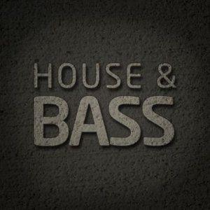 Sesion Bass-House