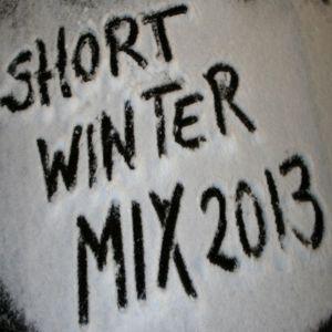 Ronn-Sastro ShortWinterMix2013