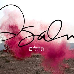Psalms 8 Part 2