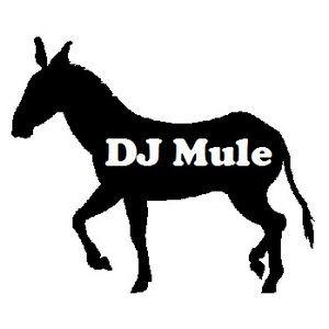 Miami Tribute Mix