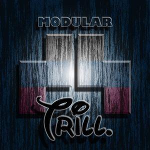 Modular EP4 // Guestmix: Trill (QLD)