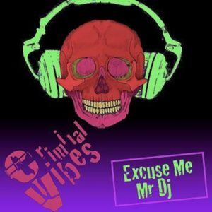 CRIMINAL VIBES - EXCUSE ME MR. DJ (DJ CANALE)