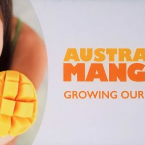 National mango conference in Darwin, an interview with industry chairman Ben Martin