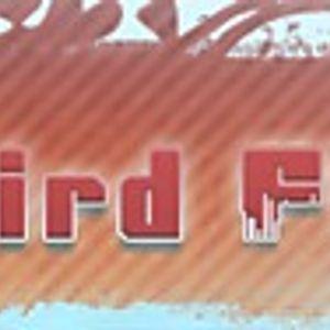 BEATBIRD FM MUSIC IS RADIO SHOW LIVE 2012 05 16