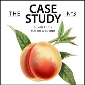 Summer 2014:  The Case Study No. 3