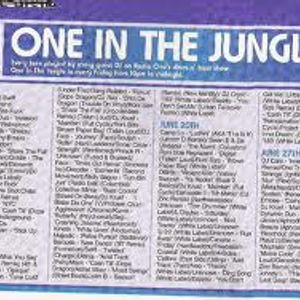 BBC Radio 1 - One In The Jungle hosted by MC Navigator with Kemistry & Storm feat MC Flux June 1996