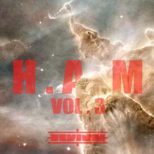 H.A.M Vol. 3