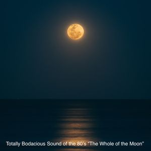 """Totally Bodacious Sound of 80's Vol. 2 """"The Whole Of the Moon"""""""