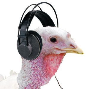 2017 ThanksGiving Mix - Dj Daze