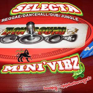 Mini'Vibz @ The Village Radio rec_(04_28_2015) DUB Session