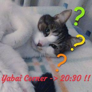 Yabai Corner! - Panda-san 9/11/2019