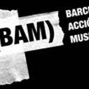 Cauto@BAM_2008