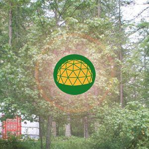 11 - Proteccion de la Naturaleza Radio - Dentro de la Espiral - Inside the Spiral