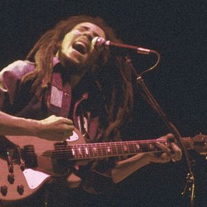 Bob Marley and the Wailers - Dec. 6th 1979 Hoch Auditorium   Lawrence, Kansas Full Show