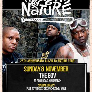 DJ Sanchez - Naughty By Nature Promotional Mix (2015)