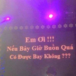 fly Room - Chu Khôii
