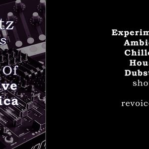 totbeatz presents: The Best of Distinctive electronica #1