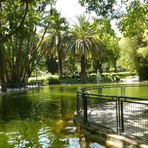 Master Margherita - Jardim da Estrela May 2012 - Part 1