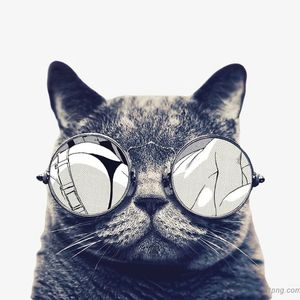『DeeJay AhBear』 老科斯塔英文是什么歌?听听就知道了 MANYA0 R3M!X 2K19 JUST FOR ZACH猫爷摇