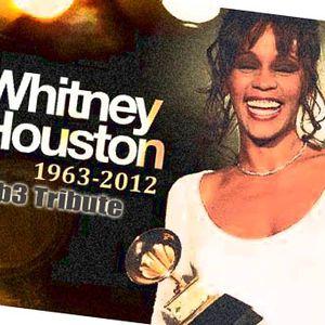 Whitney Houston ( Nelb3 tribute Project)