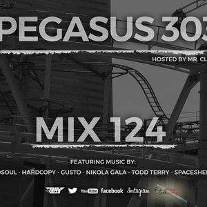 Pegasus 303 Mix 124 – Mr.Clean