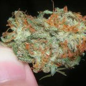 yes i smoke weed so dont cut ur self