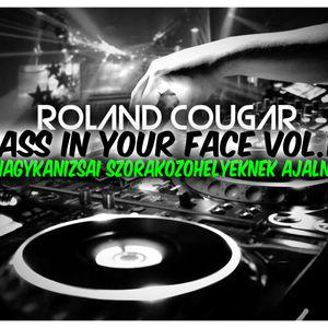 Roland Cougar - Bass In Your Face Vol.15 (A Nagykanizsai Szórakozóhelyeknek Ajánlva )