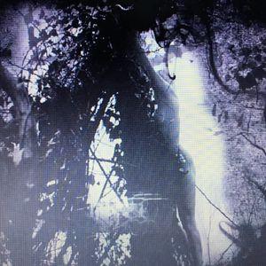 Sesion Kim Ran _ Pisetzky - Tears of a rough machine