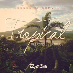 Sounds of Summer - Tropical Relaxing Deep House Mix 2015