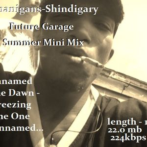 Shinanigans-Shindigary-Future Garage Summer Mini Mix !!!
