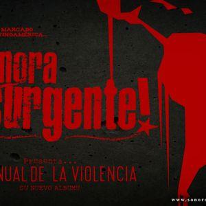 Entrevista a la Sonora Insurgente