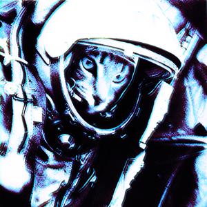 Space Rock Cosmonaut