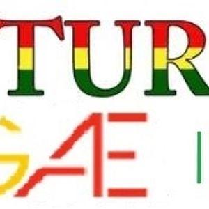 Saturday Reggae Live! - 2x11 (19.04.14)