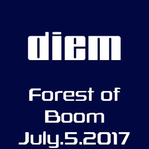 diem live at the Forest of Boom - 4 hour set, 7-5-17
