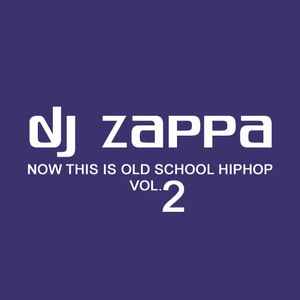 DJ Zappa - Now This IS Old School Hiphop Vol.2