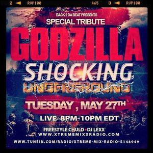 SHOCKING GODZILLA 5 -27 -14