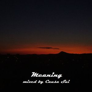 Meaning  - Mixed By Causa Sui
