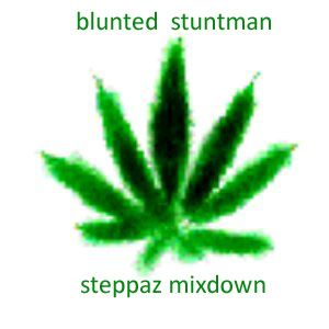 Steppaz Mixdown