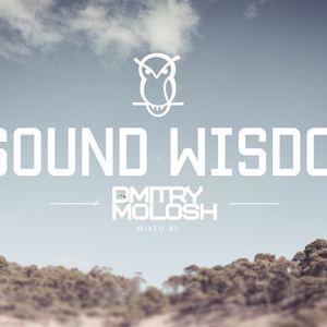Sound Wisdom 005 - Dmitry Molosh