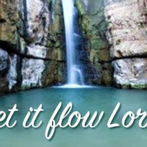 Let It Flow Lord