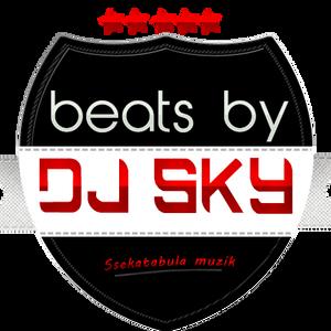 Beats by sky The Ragga Series 101