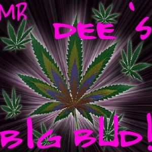mr dee's big bud