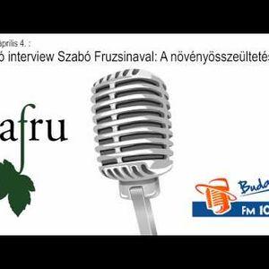Térerő interjú - Szabó Fruzsina (Safru) - 120516
