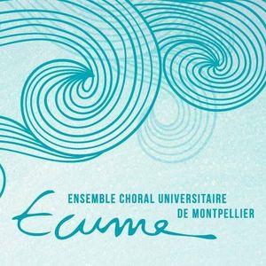 Méridionale du vendredi 9 Juin 2017 : Ecume Montpellier