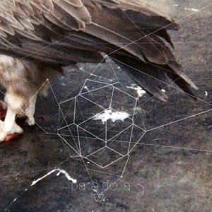 Pareidolia 1 on 06/11/2012 Egyptian Vulture