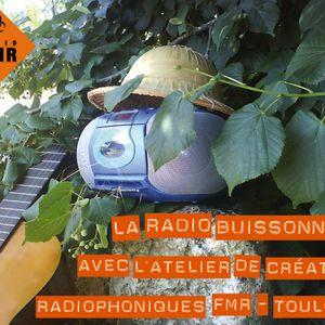 """Quatrième """"Radio Buissonnière"""" du Festival Toulouse d'été 2014 - du 06 août 2014"""