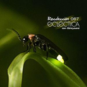 """AGO 01 """"Recolección Ecléctica"""" 067"""