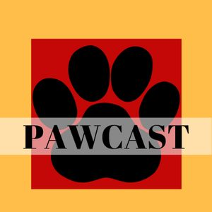 Pawcast 193: Meet the Other Ellen Plus So Much to be Thankful For