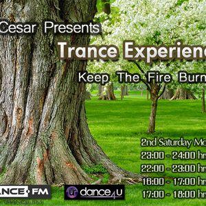 DJ Cesar Presents Trance Experiences 029